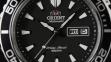 Мужские часы Orient FEM75001B6 1
