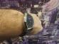 Мужские кварцевые часы SEIKO SGEC81P1 2