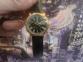 Мужские кварцевые часы Royal LONDON 40089-06 0