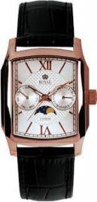 Мужские кварцевые часы Royal LONDON 40090-05